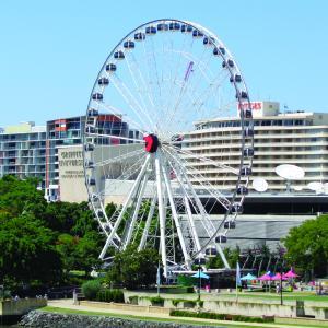 Wheel of Brisbane-01.JPG